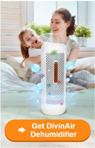 Buy Divinair Dehumidifier.jpeg